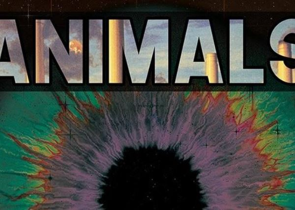 Animals Pink Floyd Tribute